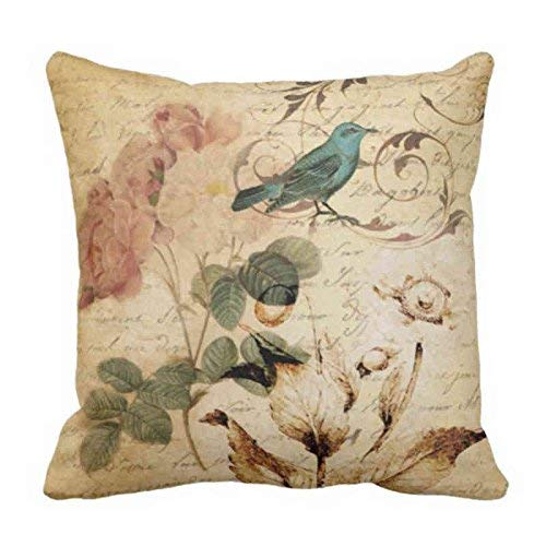Throw Pillow Cover Victorian Bird Paris French Botanical Rose Decorative Pillow Case Floral Home Decor Square Cushion Casees 20x20 Inches