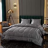 Grey Satin Comforter Set Silk Like Satin Comforter Light Grey Silky Duvet Set Solid Gray Satin Microfiber Filling Bedding Sets Queen 1 Comforter 2 Satin Pillowcases (Queen, Grey)