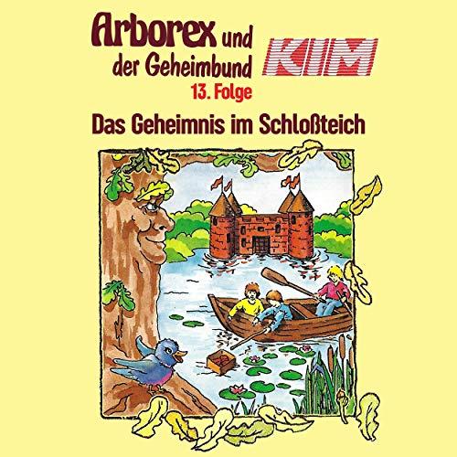 Das Geheimnis im Schloßteich audiobook cover art