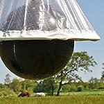 VOSS.farming Piège à taons HorseFriend » #2