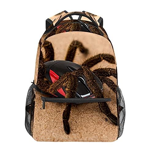 Mochila escolar divertida araña playa arena estudiante viaje senderismo camping mochila casual libro bolsas bolsa de hombro