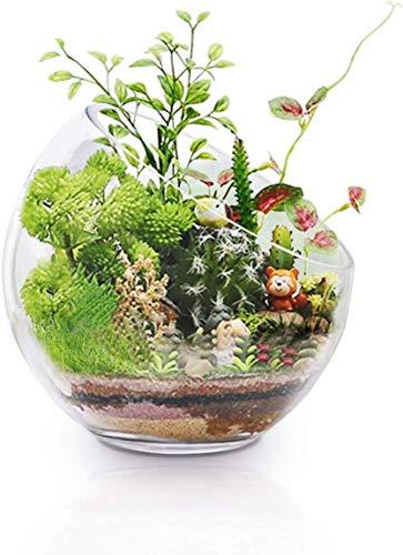 Ecosides Glasvase Kristallglas Schale Transparent rund Bubble Bowl Vasen kugelvase klar Glas Vase Blumenvase setzen Süßigkeiten, Pflanzen, Blumen, Obst für die Küche Wohnzimmer (7