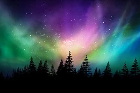 The Northern Lights Aurora Borealis Poster on Photo Paper//Canvas Canvas
