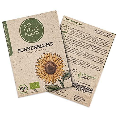 BIO-Sonnenblumen Samen, 30 Blumensamen mit hoher Keimrate von Little Plants, Sonnenblumensamen für deinen Balkon und Garten, nachhaltig verpackt in Graspapier