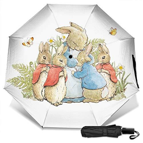 Jardín vivero tonie personaje actividad jake en la caja Pe-ter conejo compacto...