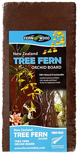 Fern Wood New Zealand Tree Fern Orchid Board Panel 12x6x1 Twin Pack