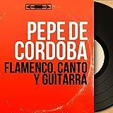 Flamenco, Canto y Guitarra (feat. Miguel Castaños) [Mono Version]