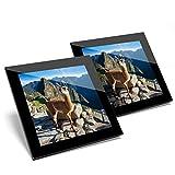 Impresionante juego de 2 posavasos de cristal – Machu Picchu Perú Llama Alpaca brillante calidad posavasos/mantel de protección para cualquier tipo de mesa #21820