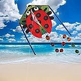 Zixin Los niños Kite Kite, niños Cometa Cometas for niños fácil de Volar con Deportes al Aire Libre Cometas Pescado Mariquita Breeze (Color: Mariquita Cometa 30m) (Color : Ladybug Kite 30m)