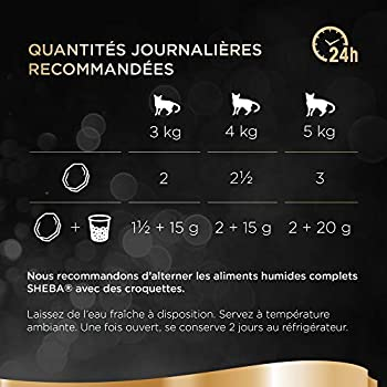 Sheba Terrines Classiques - Barquettes pour chat adulte, Coffret océan, 72 barquettes de 85g
