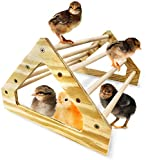 Backyard Barnyard Chick Perch Strong Wooden Jungle Gym Roosting Bar Made in USA!!! Chicken Toys for Coop and Brooder for Baby Chicks El Pollitos La Pollita Pollos Gallinas Polluelos