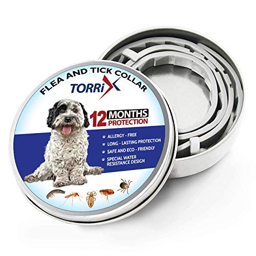 TORRIX Collier Anti-puces et tiques pour Chien- 12 Mois de prévention Contre Les puces - Réglable et imperméable pour Chien Anti-puces et Anti-tiques