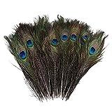 SurePromise One Stop Solution for Sourcing Lot de 50 plumes de paon naturelles 25,4 à 30,5 cm