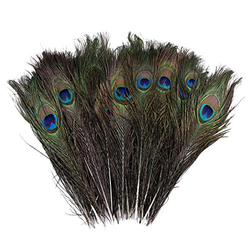 SurePromise Pack of 50pcs Natural Real Peacock Feathers 10-12 Inch
