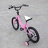 Aohuada - Bicicleta Infantil Unisex de 16 Pulgadas (Rosa)
