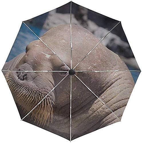 Automatischer Regenschirm Walross Face Sea Dweller Old Seal Travel Praktisch Winddicht Wasserdicht Faltbar Auto Open Close