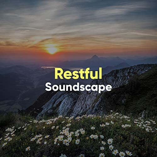 Water Ambience & Rest & Relax Nature Sounds Artists