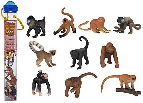 Safari Affen und Affen.