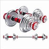 LILY Ensemble d'haltères Réglable haltère All-placage du Fer Gym haltère Poids Set Home Gym Exercice Biceps Haltérophilie 66 Lbs Haltères de Ménage (Taille : 10KG)