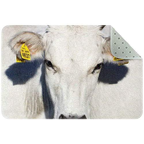 Bennigiry Alfombra de ganado lechero de vaca con leche, alfombra de entrada para sala de estar, dormitorio, sala de juegos, 61 x 40 cm