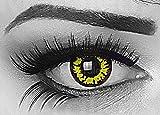 Lenti a contatto colorate gialle con porta lenti a contatto morbide comode da indossare e ideali per Halloween Manga Anime Cosplay o Carnevale senza correzione Yellow Wolf Lupo Mannaro Meralens
