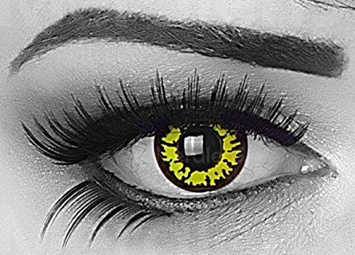 MeralenS ein Paar farbige gelbe yellow Wolf Crazy Fun Jahres Kontaktlinsen mit Rand und gratis Linsenbehälter. Ideal für Halloween, Fasching, Karneval und Fastnacht.