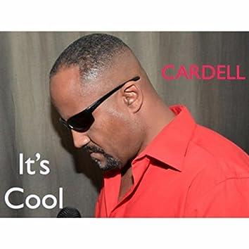 It's Cool - Single