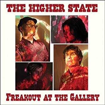 Freakout at the Gallery