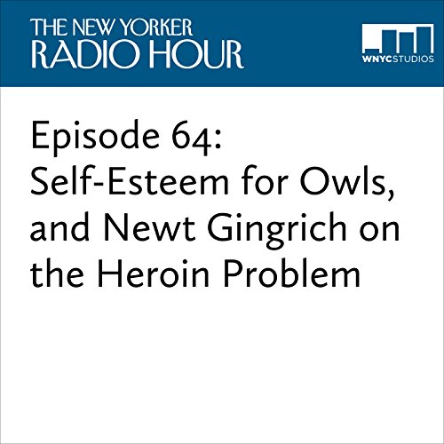 Episode 64: Self-Esteem for Owls, and Newt Gingrich on the Heroin Problem audiobook cover art