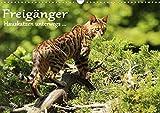 Freigänger - Hauskatzen unterwegs (Wandkalender 2020 DIN A3 quer)