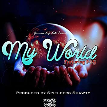 My World (feat. P.I.G)