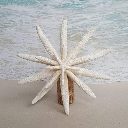 SALE! Starfish Tree Topper - 5-6', 7-8', 9-10' or 11-12' size options -4 starfish