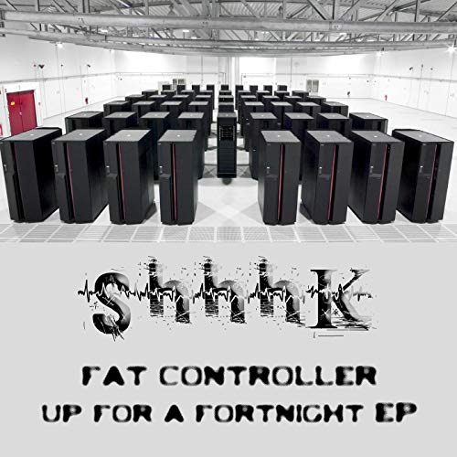 Fat Controller (Stay Up For A Fortnight Mix)