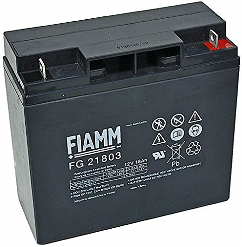 Original FIAMM Akku 12V 18Ah Batterie Akku FG21703 / FG21803 UPS USV GF 21703