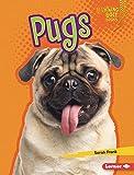 Pugs (Lightning Bolt Books (R) -- Who's a Good Dog?)