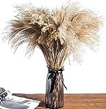 Pampas secas decoración Grandes 45cm - Contiene 25 Unidades de Plumas decoración Pampa - Flores Artificiales Decoracion jarrones largas - Ramas secas Decorativas