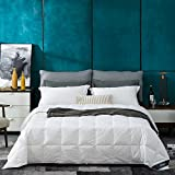 Globon White Goose Down Comforter/Blanket Queen Lightweight Summer, Noiseless & Extra Soft Down-Proof Shell, 400 Thread Count Hypoallergenic, 14OZ, 700 Fill Power, with Ties, Solid White.