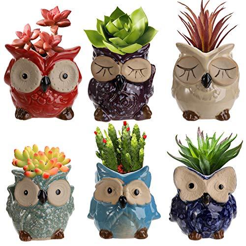 Hedume 6 Pcs 3 Inches Owl Pots, Owl Succulent Plants Pots, Bonsai Planter Cactus Plant Pot Flower Pot Container, Ceramic Flowing Glaze Base Serial Set Succulent Plant Pot with Drainage Holes