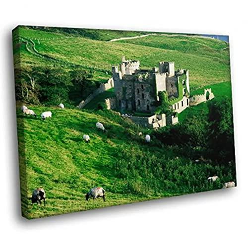 Leinwand Malerei Dekorative LANDSCAPE ART Wall Decor Clifden Castle Grass Ireland Print Poster Prints Courtyard Wall Canvas Painting Home Dekoration Kunst Wand Geschenk 24x36 Zoll rahmenlos
