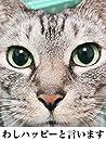 【癒し系 猫の写真集】名前はハッピーちゃんだよ☆
