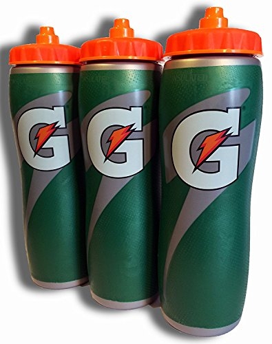 Gatorade Insulated 32oz Water Bottle by