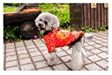 Hotumn Dog Tang Costume Blessing Pet Winter Coat Happy New Year Cheongsam Qipao Dresses Cat Peony Design Clothes for Schnauzer Teddy French Bulldog (XX-Large)