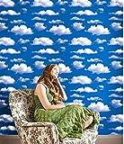 FANPING Nubes del Cielo Azul del patrón de Contacto de Papel Auto de Adhersive Vinilo removible Papel Pintado Entrepaños de Cocina Accent Wall Art Crafts Decoración 45cm x 3m