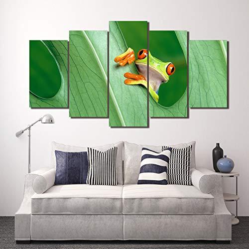 DGGDVP Cuadros enmarcados HD Impreso Cuadro de Rana Pintura Arte de la Pared Decoración de la habitación Impresión del Cartel Imagen Lienzo Tamaño 1 con Marco
