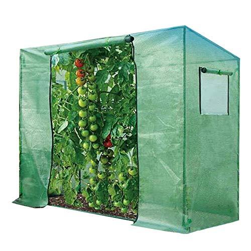 HWF Invernadero de Jardín Caseta Invernadero Portátil Grande para Plantas con Cubierta...