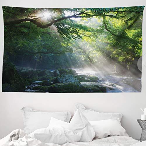 ABAKUHAUS Wald Wandteppich und Tagesdecke Sonnenstrahlen welche über den bäumen an den Fluss reflektieren Natur Fotographieaus Weiches Mikrofaser Stoff 230 x 140 cm Kein Verblassen Grün Weiß
