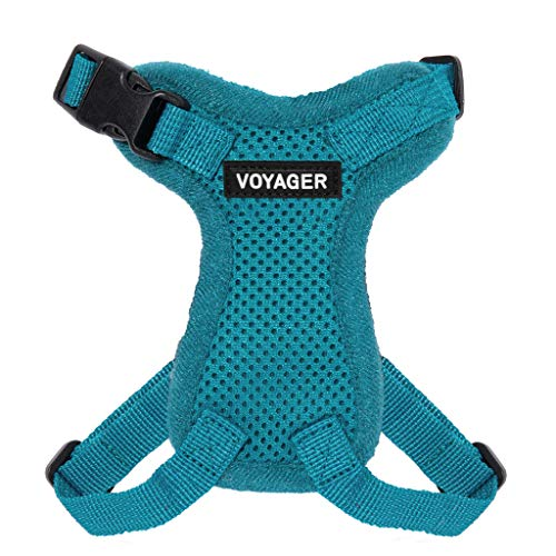Best Pet Supplies Voyager Step-in Lock Cat Harness - Adjustable Step-in Vest Harness for Small and Large Cats - Turquoise (Matching Trim), XX-Small