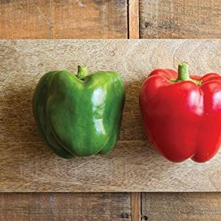 King Arthur Pepper Seeds (Capsicum annuum) 10+ Rare Seeds + FREE Bonus 6 Variety Seed Pack - a $29.95 Value! Packed in FROZEN SEED CAPSULES for Growing Seeds Now or Saving Seeds For Years