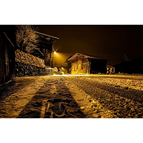 Accesorios de Fondo de fotografía de Vinilo, Fondo de fotografía de Paisaje de Invierno Cortina de Estudio A8 10x7ft / 3x2.2m