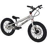 BMX 自転車 16インチストリートトライアルバイク子供用の完全なトライアルバイク、TP16 Iアルミ合金フレームとフォーク、WINZIPダブルアクションラインディスクブレーキ,Brushed silver